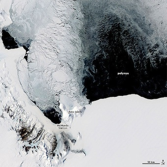 Polynya off the Antarctic Coast by NASA Earth Observatory (cc) (From Flickr)