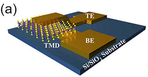 Atomristors, a new single (atomic) layer memristor